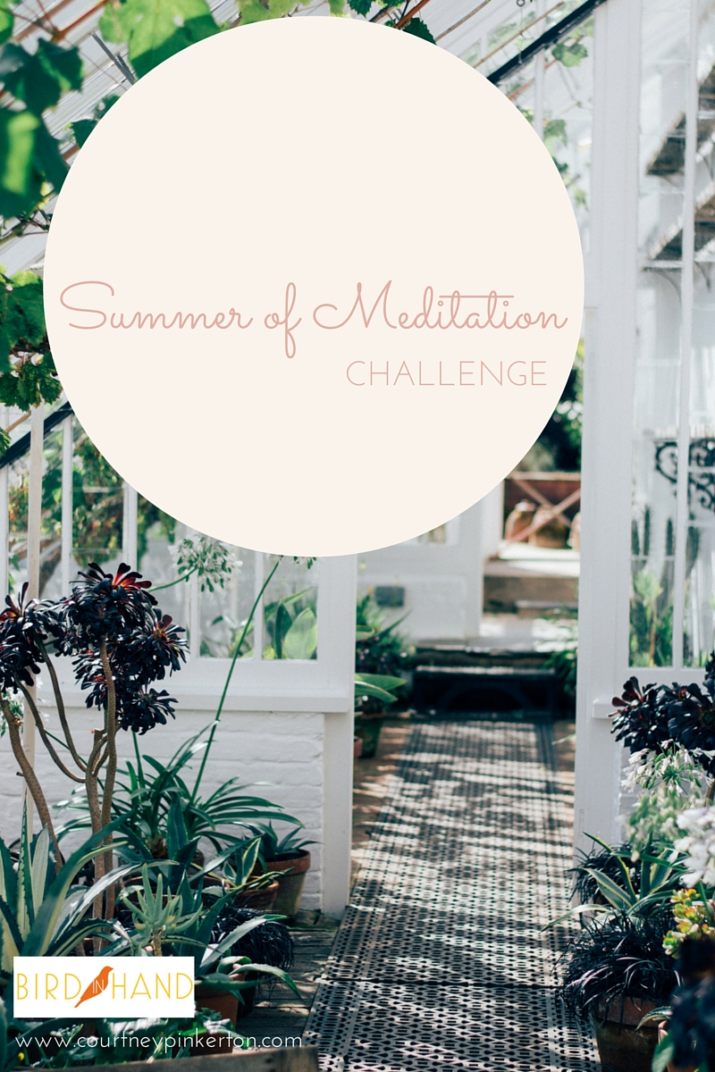 Summer of Meditation Challenge 2016