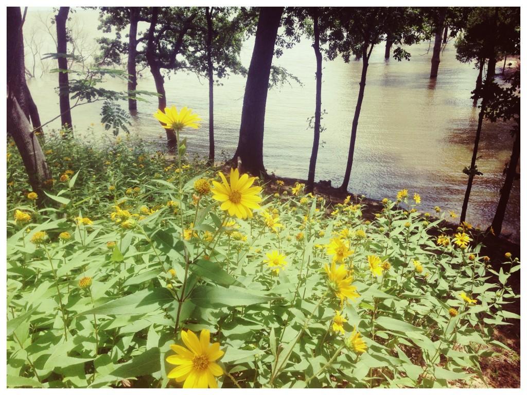 Photo Jul 09, 9 39 15 AM