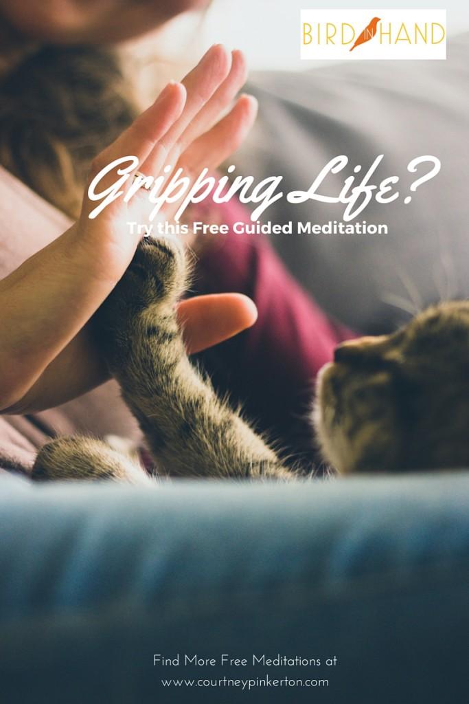 Gripping Life Meditation