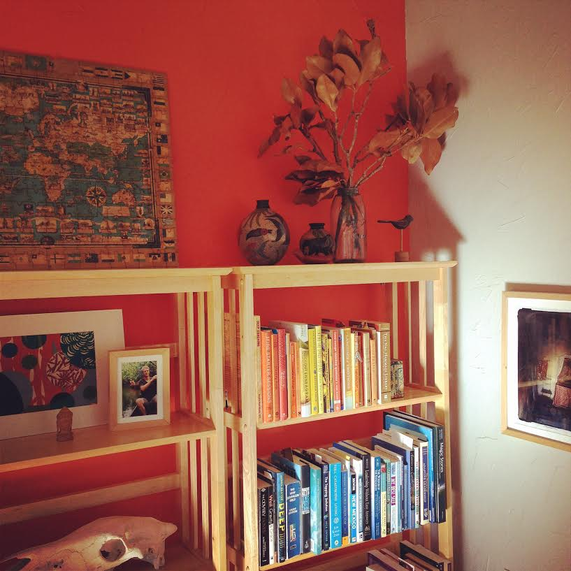 Color_Coded_Bookshelves