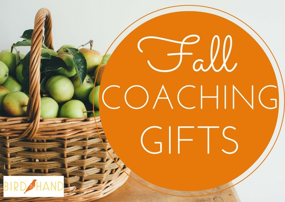 fallcoachinggifts2016