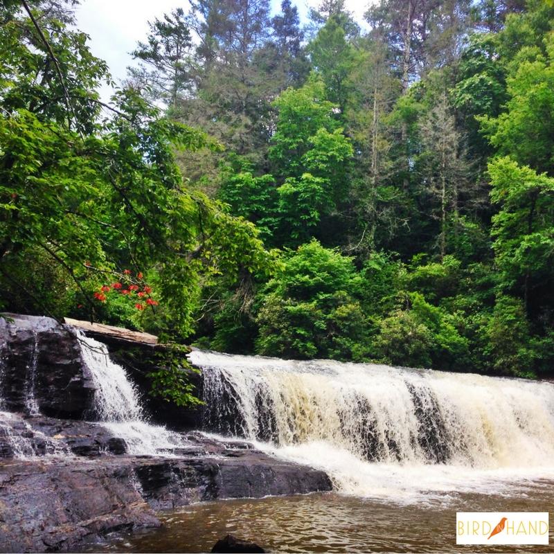 ncwaterfall